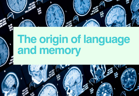 The origin of language and memory