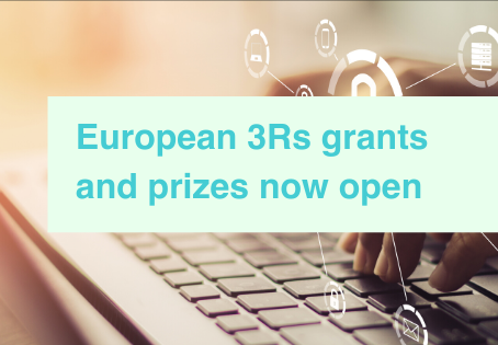 3Rs grants and awards