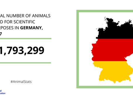 Research sector in Germany welcomes EU-wide figures on the number of animals used in science