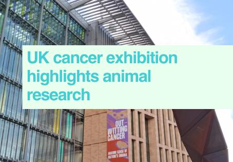 UK cancer exhibition