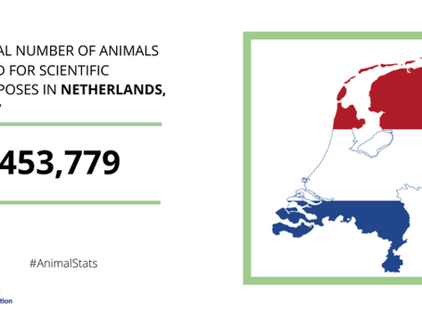 Research sector in the Netherlands welcomes EU-wide figures on the number of animals in science