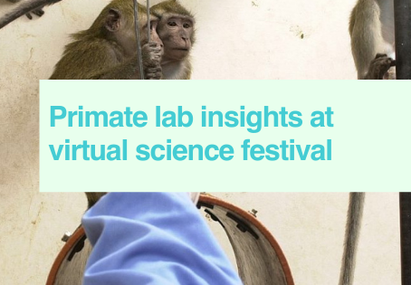 Primate lab at online festival