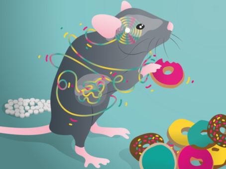 Insights into food disorders with mice study