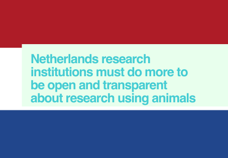 Netherlands - EARA Study of EU-based websites 2020
