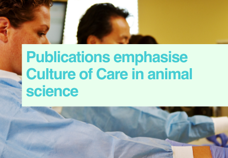 New Culture of Care publications
