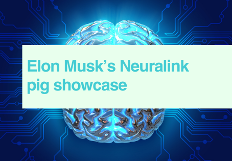 Neuralink pig showcase - video