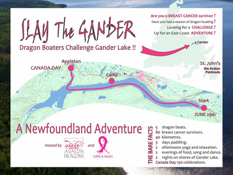 Announcing our plans to Slay the Gander