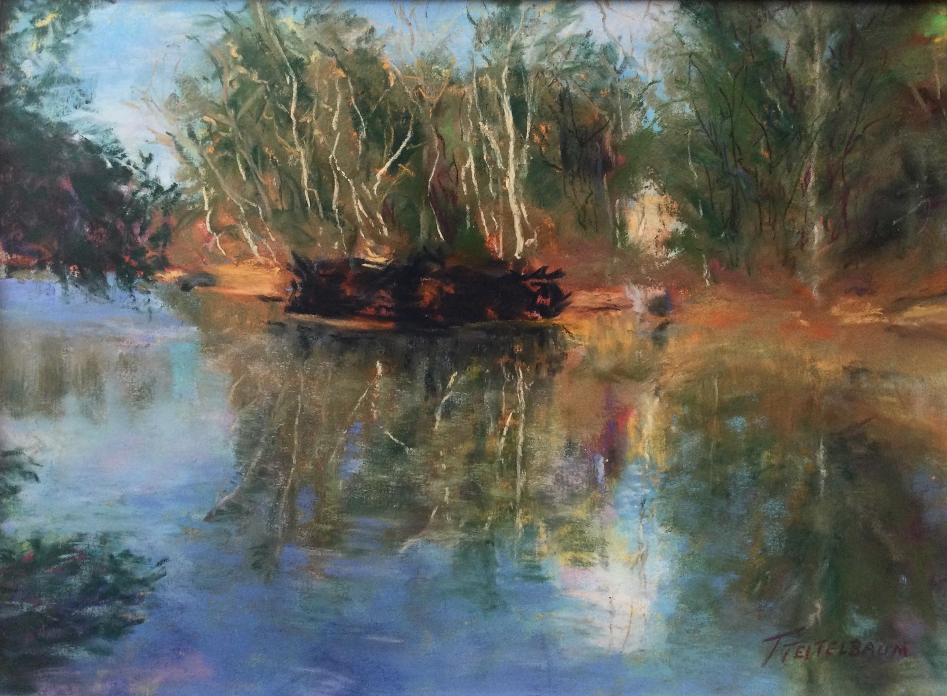 Presumpscot River Preserve