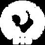 BID-Logo-Pink.png
