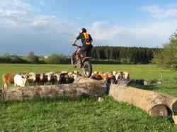 Kuhler-Jump1