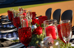 Table set up on the field