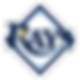 RaysBaseball4_avatar_1484716536.png
