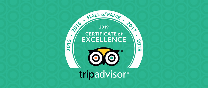 Thanks to your kind words, GMS Field received the 2019 People Love Us on YELP award and Certificate of Excellence, Hall of Fame on Tripadvisor! We're hoping that you can help us spread the word by posting a review to our new GMS Field Facebook page! It only takes a minute.