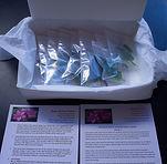 Order Package.jpg