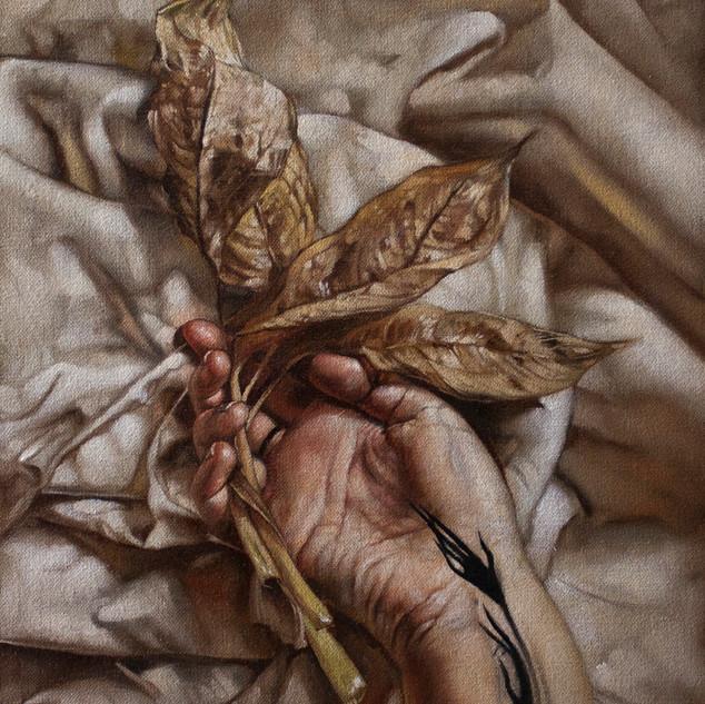 Hope Leaves