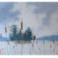 Algonquin frozen lake island lake bullrushes