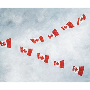 Canada Flag Geese painting