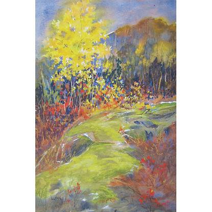 Muskoka path forest trees autumn