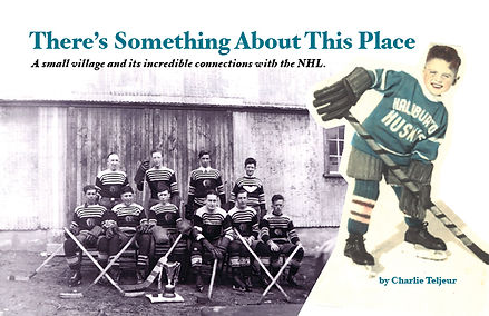 There's Something About This Place hockey book