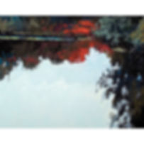 Trees, forest, lake, paint, gouche