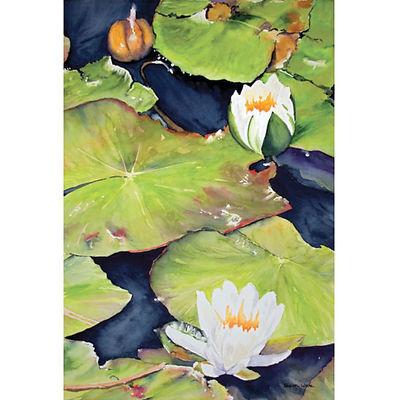 Muskoka waterlilies Rosseau art nature