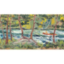 Muskoka Algonquin rapids canoe foresto