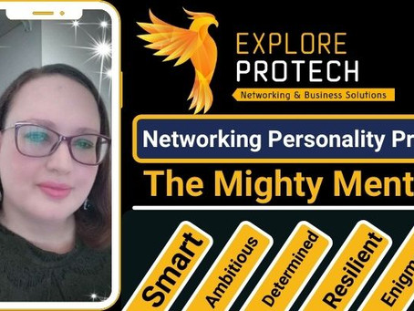 The Mighty Mentee Networking Personality Profile