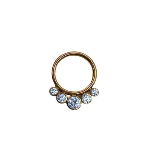 The 'Luminance' Ring Titanium Anodised Gold