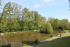 Fishing pool 2.JPG