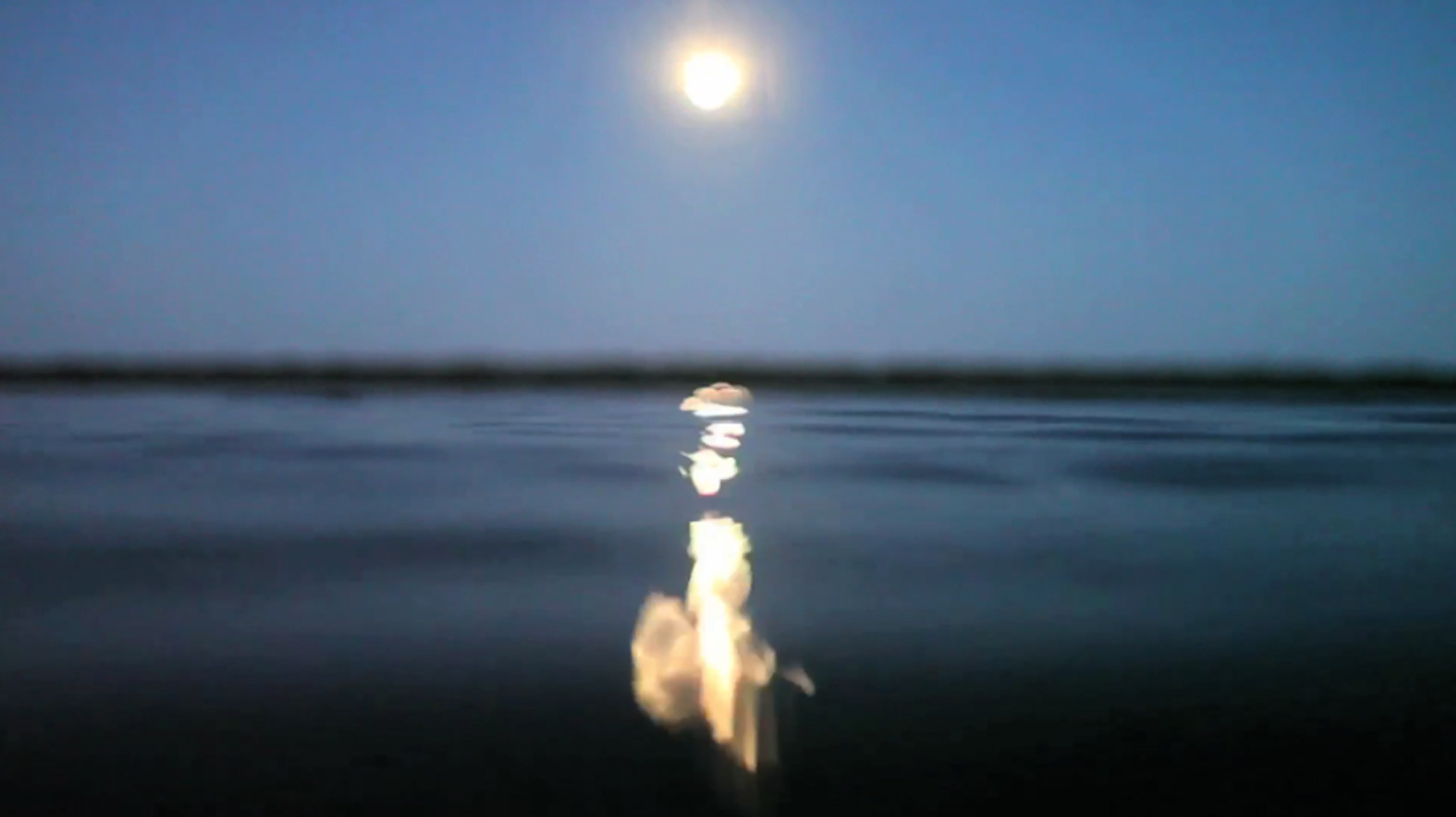 hampton The Night of the Eclipse, Water ate the Moon, Crab Island, Dec 2010 VIDEO STILL
