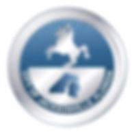 COJ-logo-Silver-Blue_edited.jpg