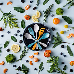 biodegradable reusable flatware