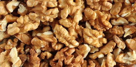 walnuts 5.png