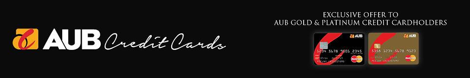 Wyndham Promo landing page banner2.jpg