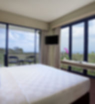 11. Ocean View Deluxe King Room.jpg