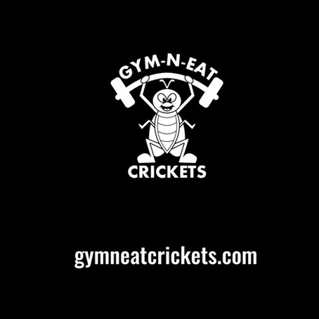 Gym-N-Eat Crickets Online Store