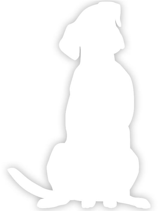 transparent dog.png