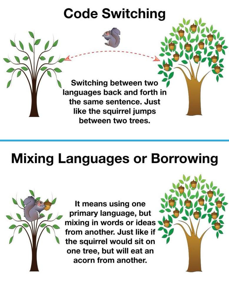 Code-Switching vs. Borrowing in Bilingual Children