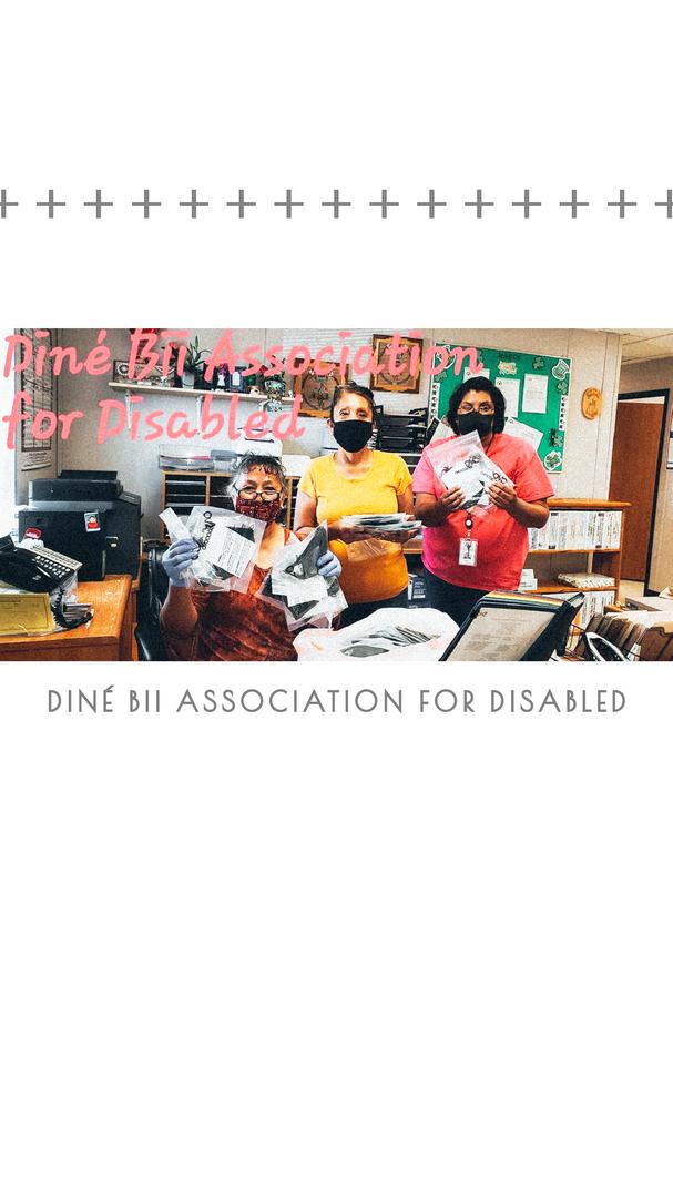DinE BII Association for diabled