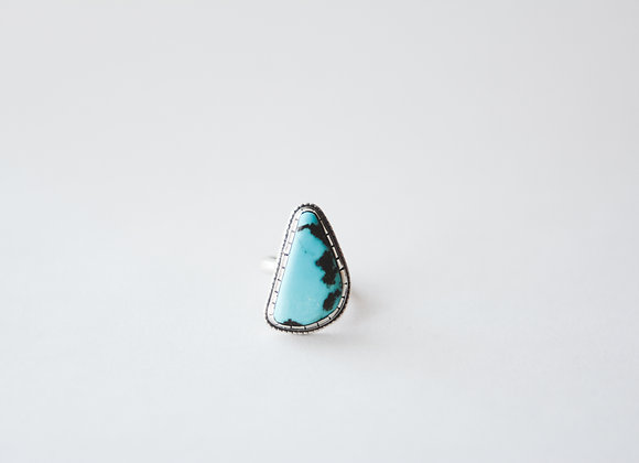 Ring #29