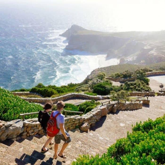 Marine Wildlife Cruise & Cape Point Tour