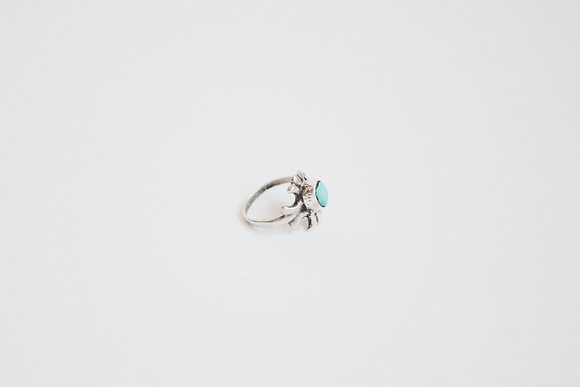 Ring 24