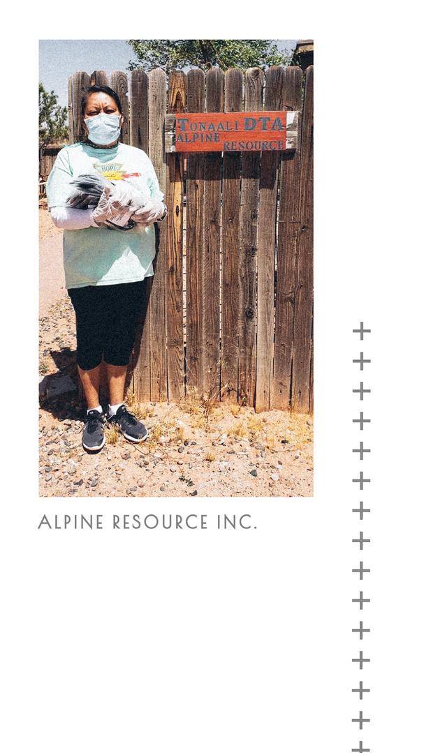 Alpine Resources Inc