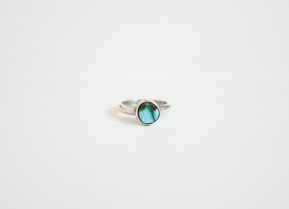 Ring #75