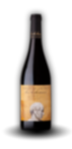 Los Bohemios Red wine Navarra