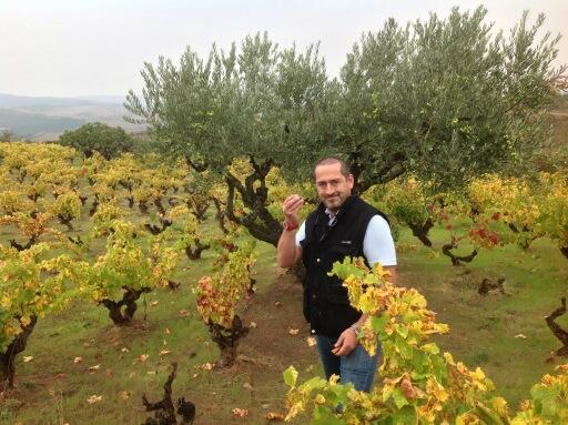 Juan Glaría in the vineyards