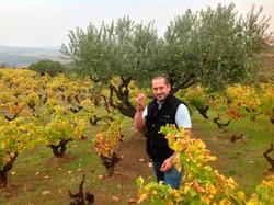 Juan Glaría in the vineyards
