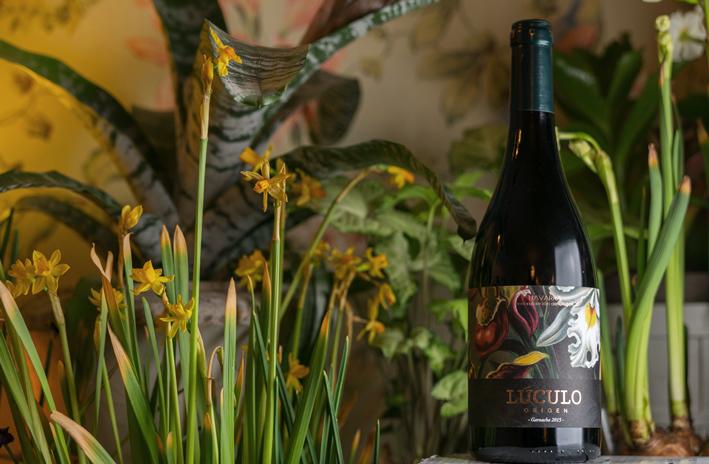 LUCULO-ORIGEN-selected-vines-signature-wine-navarra-spain