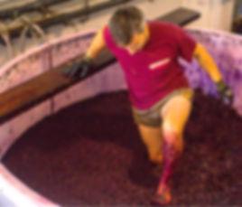 El enólogo de la bodega Pagos el Moncayo, Gonzalo, pisando uva con el método tradicional