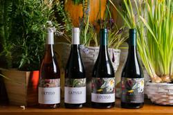 CATULO-LUCULO-family-ORGANIC-signature-wine-navarra-spain